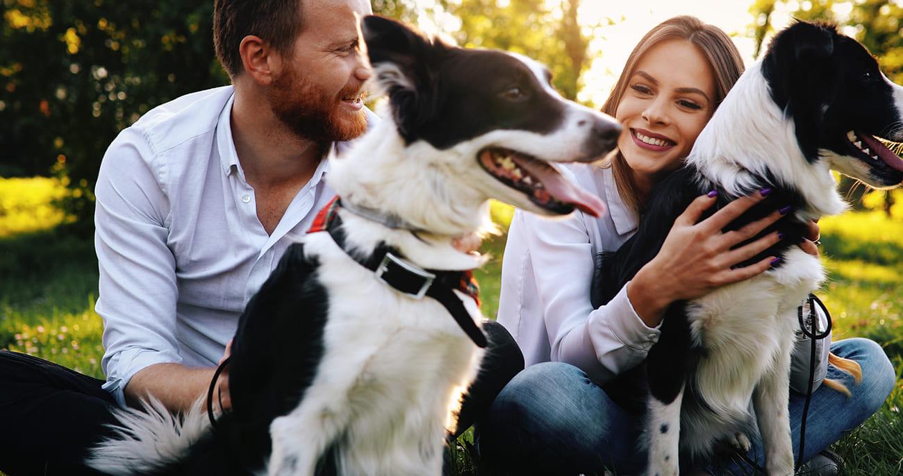 Für Ihr glückliches und gesundes Tier • Zoofachmarkt Brändle