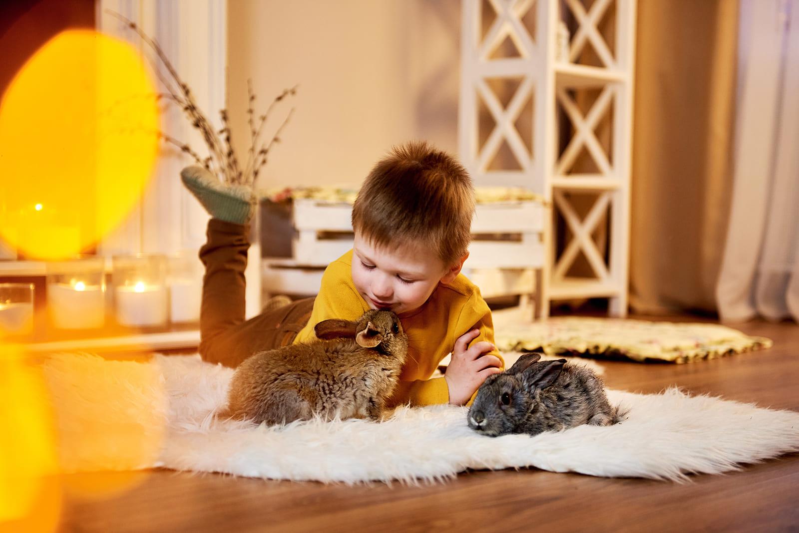 Für glückliche Haustiere und Halter in Konstanz