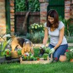 Hundeglücklich im Garten